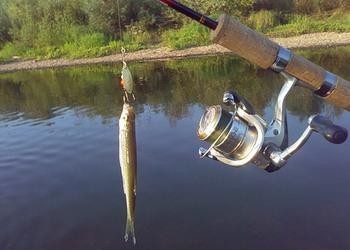 Рыбная ловля на ультралайт