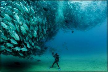 Как правильно применять барометр на рыбалке: когда переходить на ловлю с поверхности или в толще воды?