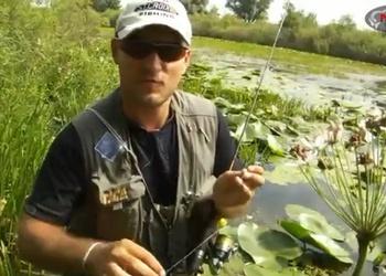 Ловля красноперки на ультралайт на заросшем водоеме