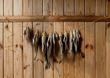 Рыболовный сезон 2014. Итоги