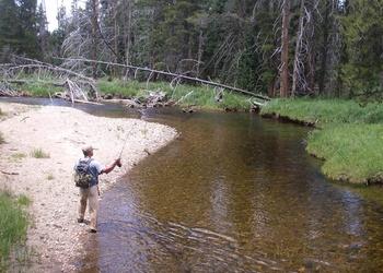 Рыбалка на ручьях